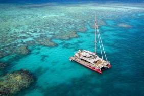 Great Barrier Reef 1-Day Snorkeling Trip